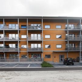 Björkris, Kungsbacka